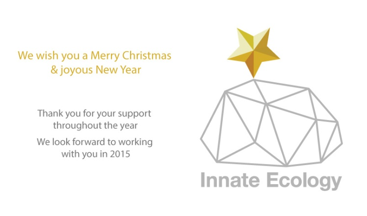 IE Christmas Message 2014